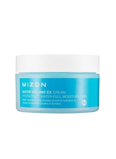 Mizon Mizon Water Volume Ex Cream Big - Kuruluk Karşıtı Nemlendirici & Yatıştırıcı Krem Renksiz